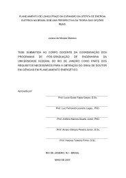 Tese V_Final 080607 - PPE - Programa de Planejamento ...