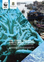 The Coral Triangle and Climate Change: Ecosystems, People and ...