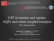 CSF formation and uptake: AQPs and solute coupled transport