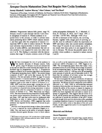 Does the prolonged in vitro maturation of human oocytes ...