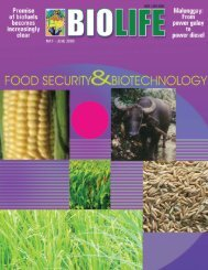 Download here (2868 KB) - SEARCA Biotechnology Information ...
