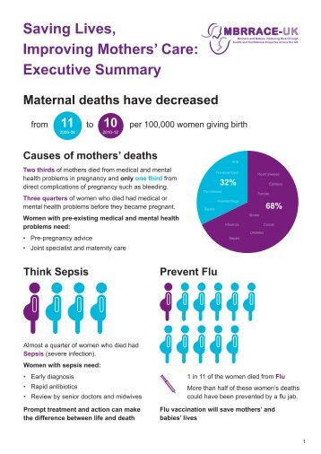 Saving Lives Improving Mothers Care report 2014 Exec Summary