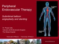 Peripheral Endovascular Therapy