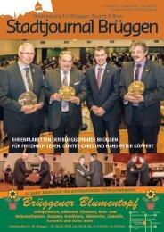 Stadtjournal Brüggen Januar 2015