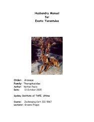 Husbandry Manual for Exotic Tarantulas - Nswfmpa.org