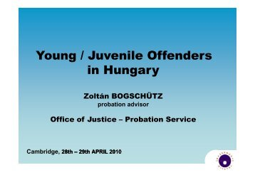 Young / Juvenile Offenders in Hungary