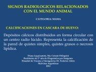 Signos radiologicos relacionados con el mundo animal Casacara ...