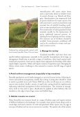 Dos and Don'ts for butterflies of the Habitats Directive of the ... - scales - Page 4