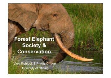 Forest Elephant Society & Conservation - University of Stirling