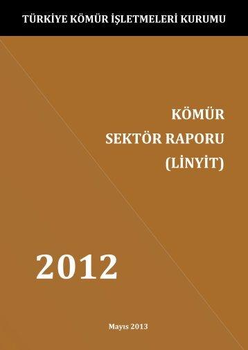 KömürSektörRaporu2012