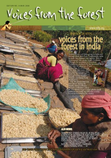 voices from the forest in india - Non-Timber Forest Products ...