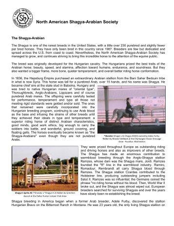 March 2009 - North American Shagya-Arabian Society