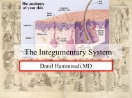 The Integumentary System - Sinoe medical homepage.