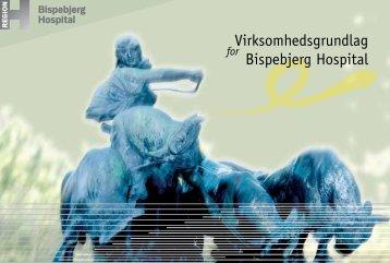 Værdier og virksomhedsgrundlag (pdf) - Bispebjerg Hospital