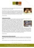 Italy Pedal & Paint Tour - Travel & Tour Hunters - Page 7