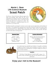 Scout Patch - Monte L. Bean Life Science Museum - Brigham Young ...