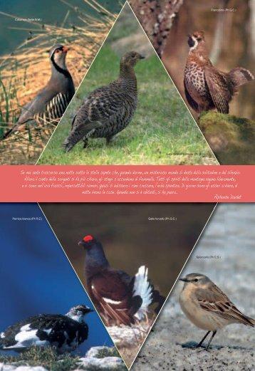 Aprile – Agenda 2010 definitiva in pdf - Club Alpino Italiano ...