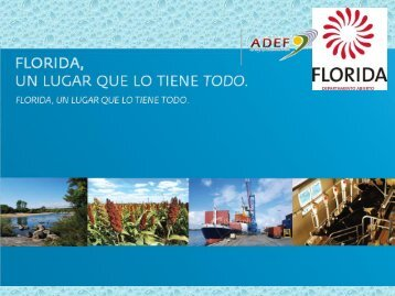 invertir en florida - Adef.com.uy