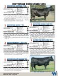 Bulls Are Our Business - Angus Journal - Page 5