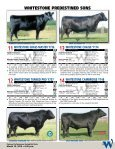Bulls Are Our Business - Angus Journal - Page 7