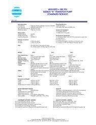DS-transfer pump 4000bpd x 300 PSI S-0703.pdf - FCE