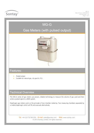 MG-G Gas Meters (with pulsed output) - Sontay