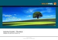 Dr. Karl Maria Grünauer - SolarFuel GmbH