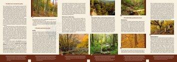 Lesy NP Podyjí - Národní park Podyjí