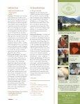 Die Allgäuerin – Das Alpine Steinschaf - 18.07.09 - Alpines Steinschaf - Seite 4