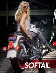 Softail - Zodiac