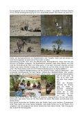 Kaokoveld-Tour 2004 - Schlammreporter - Seite 7