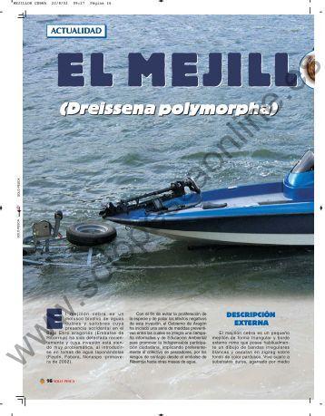 (Dreissena polymorpha) - Solopescaonline.es