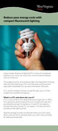 Reduce your energy costs with compact fluorescent lighting