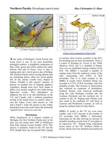 Northern Parula - Michigan Breeding Bird Atlas Website