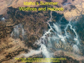 Idaho's Summer: Wildfires and Haboob