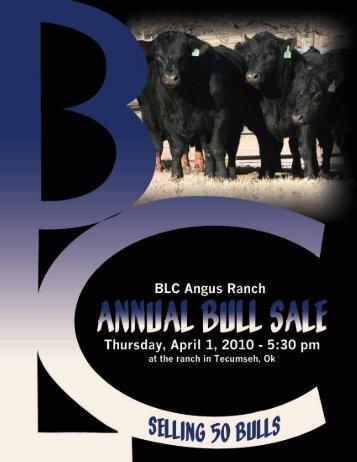 AMF-NHF - MCS Auction, LLC