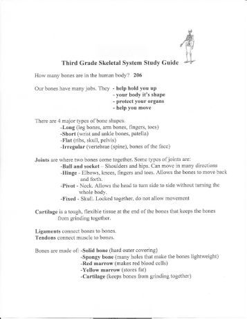 skeletal system study guide 75 study guide 7 1types of muscle tissues match the types of muscle tissues with the words and phrases 1) skeletal 2) smooth 3) cardiac _____ striated _____ walls of blood vessels.