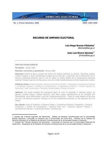 RECURSO DE AMPARO ELECTORAL - Dialnet