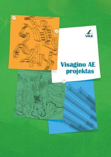 Visagino AE projektas - Vyriausybė