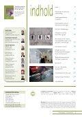 8 - Hjerneskadeforeningen - Page 3