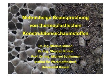 Mehrachsige Beanspruchung von thermoplastischen ... - am IFM