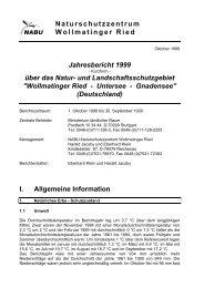 Jahresbericht Wollmatinger Ried 99 - NABU-Naturschutzzentrum ...