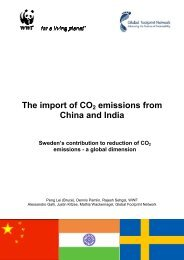 The import of CO2 emissions from China and India
