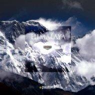 Brochure - Pastorelli