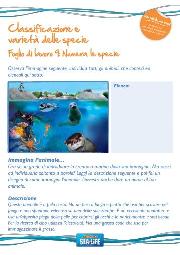 Ks2-Sealife-Resourcepk-pupil workshts pg9-16