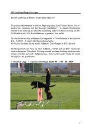 1 SRC-Herbstprüfung in Beringen Bericht und Fotos: I.Gfeller-Studer ...