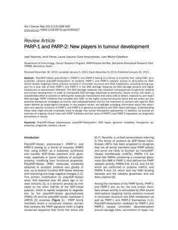 Review Article PARP-1 and PARP-2: New players in tumour ...