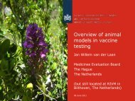Overview of animal models in vaccine testing