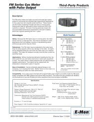 FM Series Gas Meter with Pulse Output - E-Mon