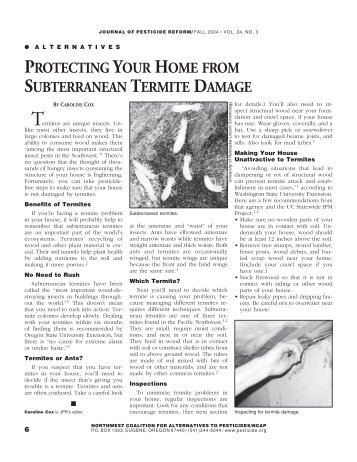 protecting your home from subterranean termite damage